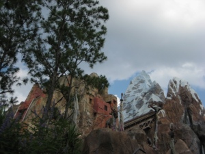 Photo Of Everest Ride - Animal Kingdom